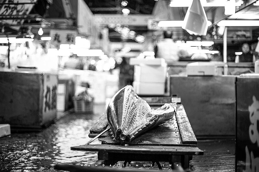 Tuna, Tsukiji Fishmarket Tokyo Japan 2016 © Wanda Proft, WANDALISMUS.INK