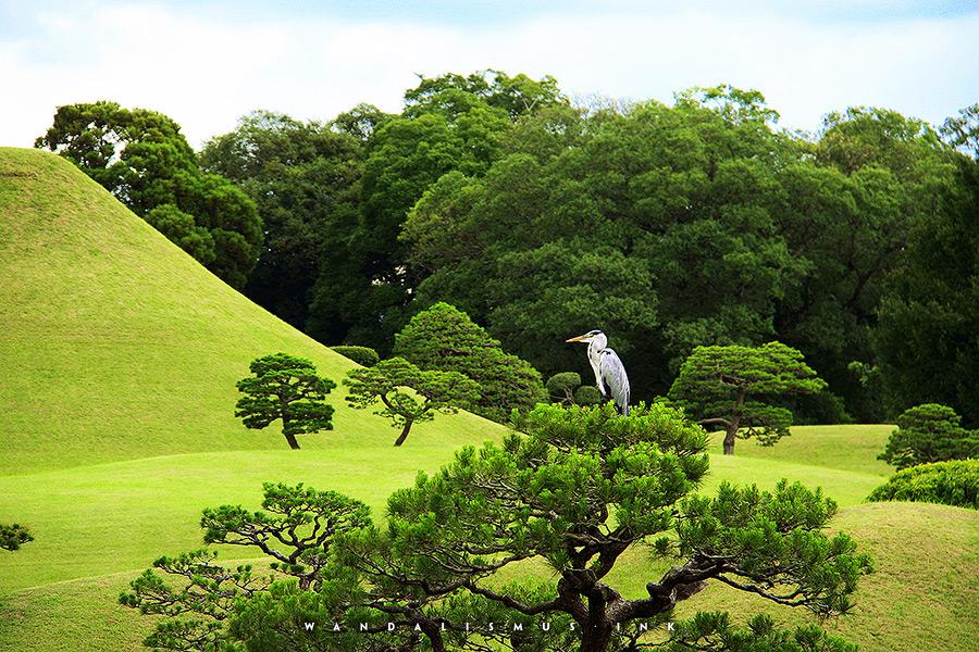 Japanese Heart Kumamoto 2012 © Wanda Proft, WANDALISMUS.INK